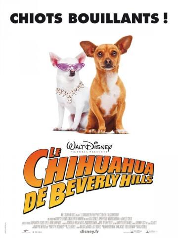 Affiche Chihuahua de Beverly Hills (Le)