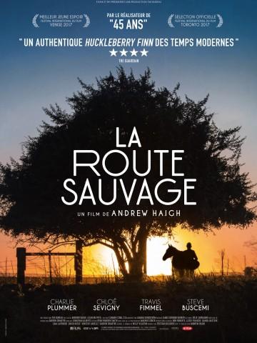 Affiche La Route sauvage