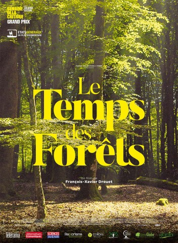 Affiche Le Temps des forêts