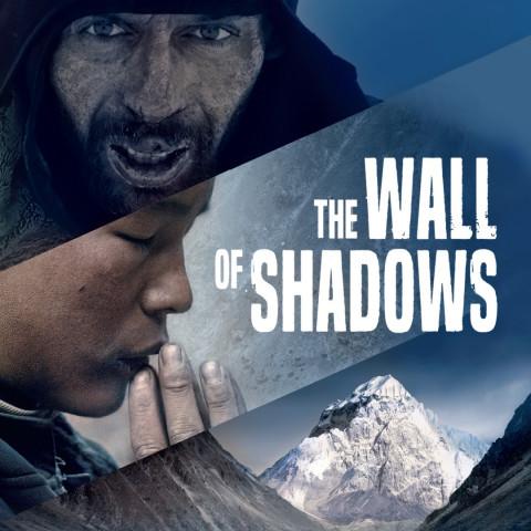 Affiche Le Mur de l'ombre